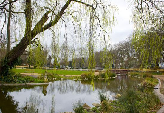parc - arbres - calme