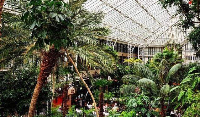 Image du Barbican Conservatory à Londres